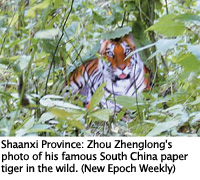 Shaanxi Province Paper Tiger, Epoch Times