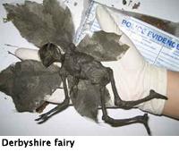 derbyshire-fairy_2001