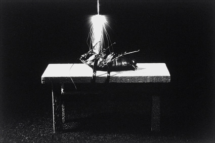 Image from Catherine Chalmers's Execution (2000)