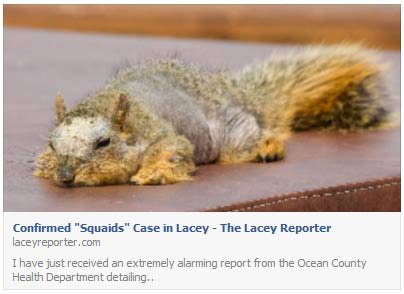 confirmed-squaids-case-in-lacey-fb