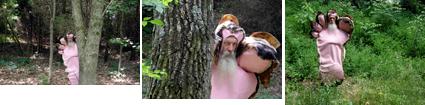Bigfoot sightings
