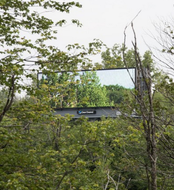 Nature Billboard, by Brian Kane